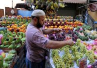 EGYPT'S AGRICULTURAL EXPORTS GETS A BOOST