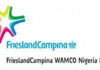 FrieslandCampina WAMCO Nigeria Plc Recruitment For IT Analyst