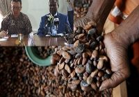 GHANA GOVERNMENT PLANS TO CONSTRUCT US$60M COCOA PROCESSING PLANT