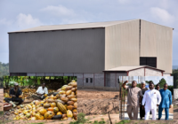 COCOA PROCESSING PLANT TO BE READY SOON IN SOUTHERN NIGERIA