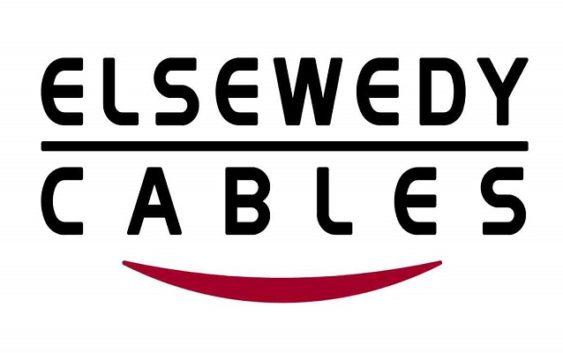 oracle financial consultant at Elsewedy Electric