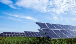 ESWATINI SELECTS 'GLOBELEQ-STURDEE' ENERGY CONSORTIUM FOR SOLAR PV PROJECTS